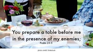 psalms 23-5